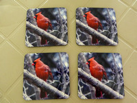 Coaster 4-Pack         $21